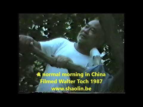 Real China martial arts filmed Sifu Walter Toch 1987