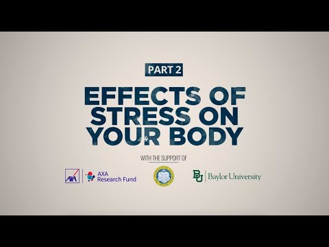 Stress and Your Health | Part 2: The Effects of Stress on Our Body | AXA Research Fund