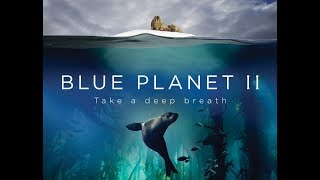 Blue Planet II : The Prequel | Sony BBC Earth
