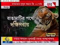 zee 24 ghanta in venture of searching tiger at lalgarh