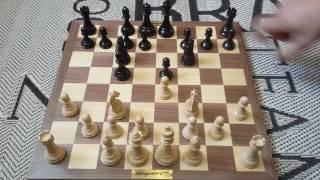 Дебют для начинающих. Шахматы. Урок 11.