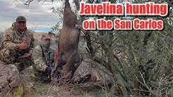 Javelina Hunting on the San Carlos ,2019