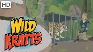 Wild Kratts - Stop Those Villains! (15+ Minutes!)