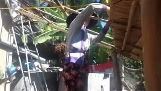 Lộp nhà lá dừa của người Bến Tre 🏡🏡_EM GÁI MIỀN TÂY