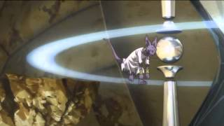 Dragon Ball Z: Battle of Gods funny - Waking up Lord Beerus