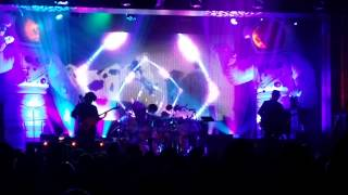 Primus: Over the Electric Grapevine LIVE