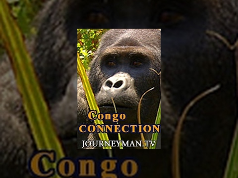 Congo Connection