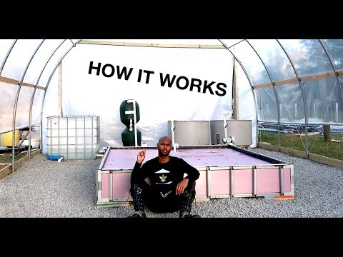 Tour Of The New System   The Aquaponics God Ep.14