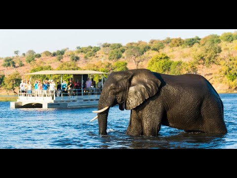 Download Botswana Best Safari Tour - Kasane