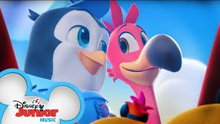 Pip and Freddy's Favorite Music Videos 🐧 | Compilation | T.O.T.S. | Disney Junior