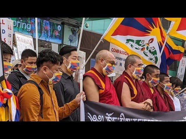 新冠疫情下的藏人社区-从达兰萨拉到西藏境内;2020年新冠疫情下的藏人流亡社区;藏人对下届美国总统将有何期待?西藏境内的藏人处境;流亡政府司政选举情况|今夜很政经