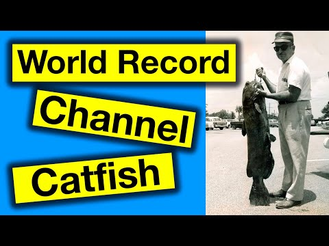 World Record Channel Catfish