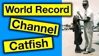 World Record Channel Catfish