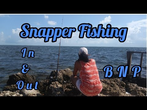 Snapper Fishing – In & out – Biscayne National Park