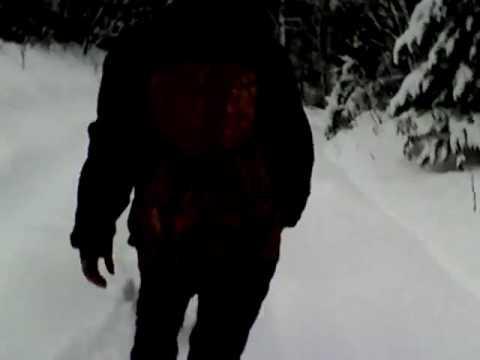 Угадай страну по видео: Детям выдали топоры для защиты от волков по дороге в школу