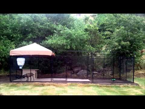 Ultimate Dog Kennel from K9 Kennels