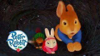 Peter Rabbit - Nutkin On The Run