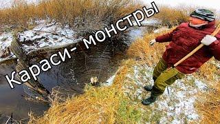 Рыбалка на паук Рыбалка в закоряженном ручье Караси Монстры