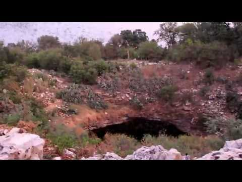 bracken-bat-cave---texas:-over-20-million-bats--1