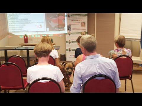 Nouveaux locaux pour la formation d'éducateur canin comportementaliste
