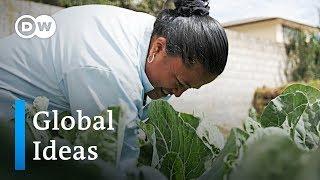 Ecuador: Stadtgärten in Quito helfen gegen den Hunger | Global Ideas