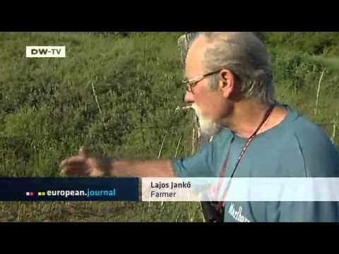 Hungary: Farmers Battling Harvest Thieves | European Journal