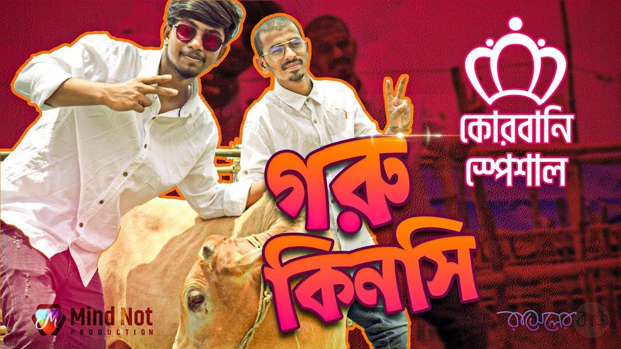 Download Qurbani Special   Goru Kinsi   কোরবানি   Korbanir Haat 2019   Kurbani - Mind Not
