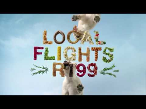 Black Friday Travel Deals – Local Flights From R199