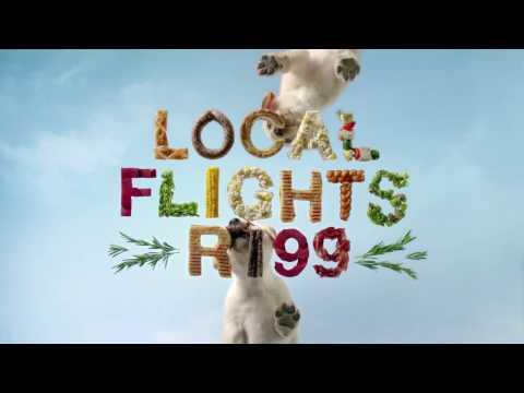 Black Friday Travel Deals – Local Flights From R199