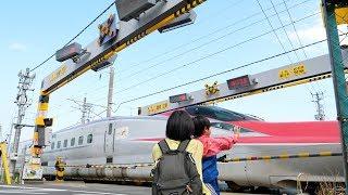 秋田新幹線のアーチ踏切 プラレールでもモデル化された大館中踏切を見てきた Akita Shinkansen Crossing thumbnail