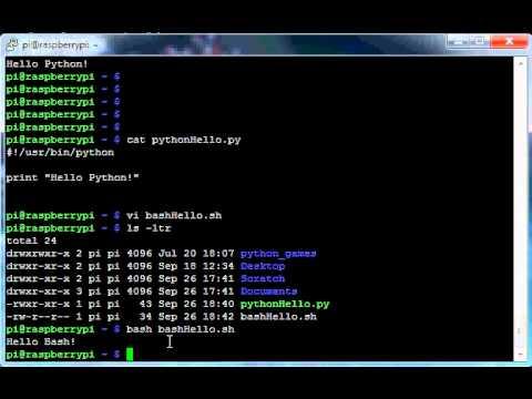 Google coder raspberry pi python