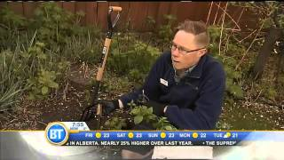 Gardening Tips with Miracle Gro 2 - May 22nd