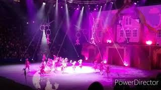 В тридевятом царстве. Новогоднее цирковое шоу 2020.