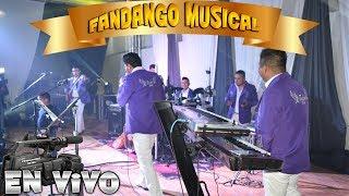 GRUPO FANDANGO MUSICAL EN VIVO DESDE TULPETLAC EDO. MEX. (PARTE 1)