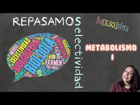 repasamos-selectividad-pau-biología:-metabolismo-i---bio[eso]sfera