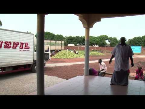 LA TECHNOLOGIE DE LA MANGUE SECHEE AU BURKINA FASO