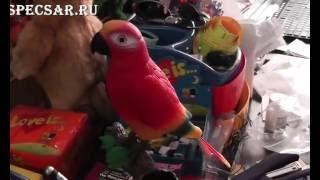 Игрушка попугай подставка под ручки повторюшка