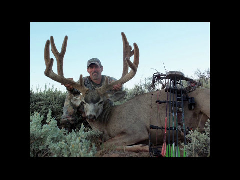 Book Your Utah Archery Mule Deer Hunt, for a chance at a giant buck