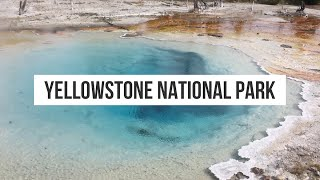 Last minute weekend in Yellowstone [Airstream Travel Vlog]