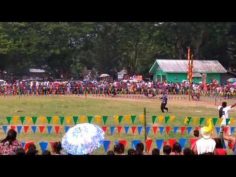 Inaul Festival Carabao Race | Buluan, Maguindanao