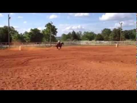 Video Tanner3
