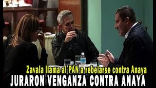 Margarita Zavala llama a los panistas a rebelarse contra Anaya