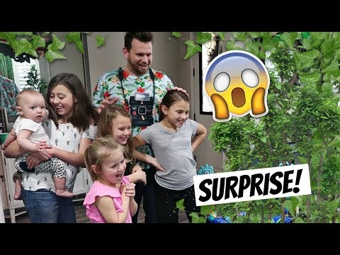 FUN FOREST ADVENTURE SURPRISE PARTY!