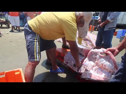 Fish Market In Ecuador. Fillet Huge Swordfish | Ep. 60