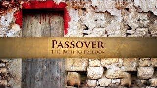 Passover: The Path To Freedom - Shabbat Night Live - 3/23/18