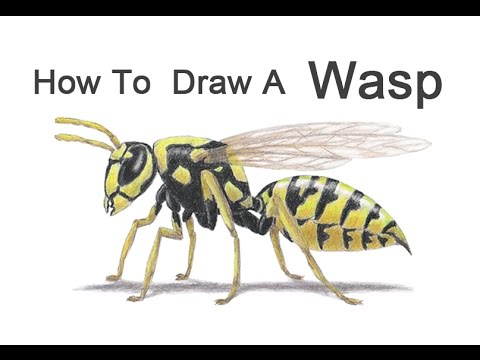 how to draw pictures with text