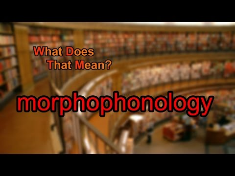 What does morphophonology mean?