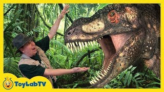Giant Life Size Dinosaur & Raptor Chase at Discover the Dinosaurs Jurassic Event for Kids