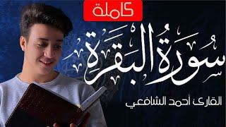Surah Al-Baqarah - Ahmed Alshafey | سورة البقرة -كاملة- القارئ أحمد الشافعي
