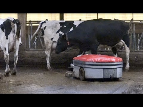 Lely Discovery 120